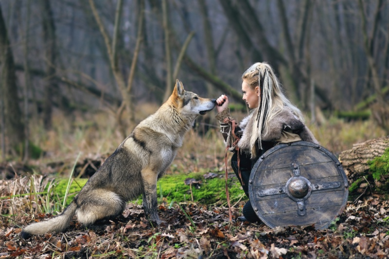 wolf ring viking culture-american wolves