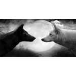 Bright Side Of The Moon Wolf Wall Art - American Wolves