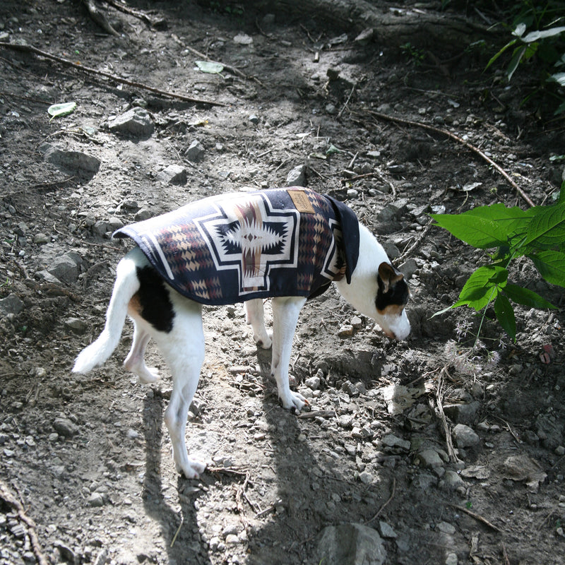 Pendleton Pet Harding Coat