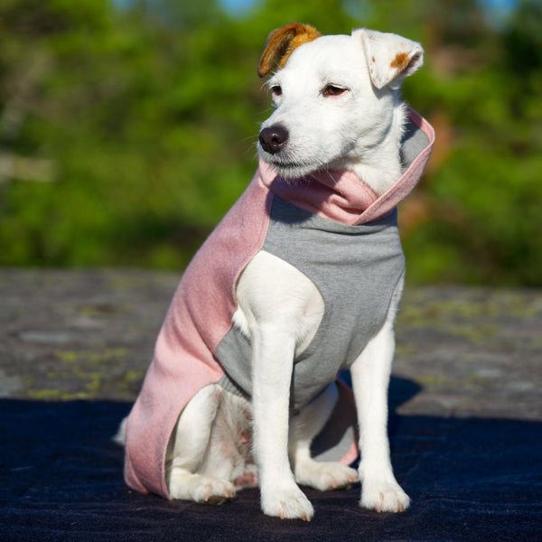 Recovery Winter Dog Shirt / PINK