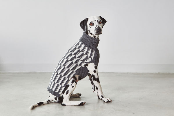 Giulia Dog Sweater