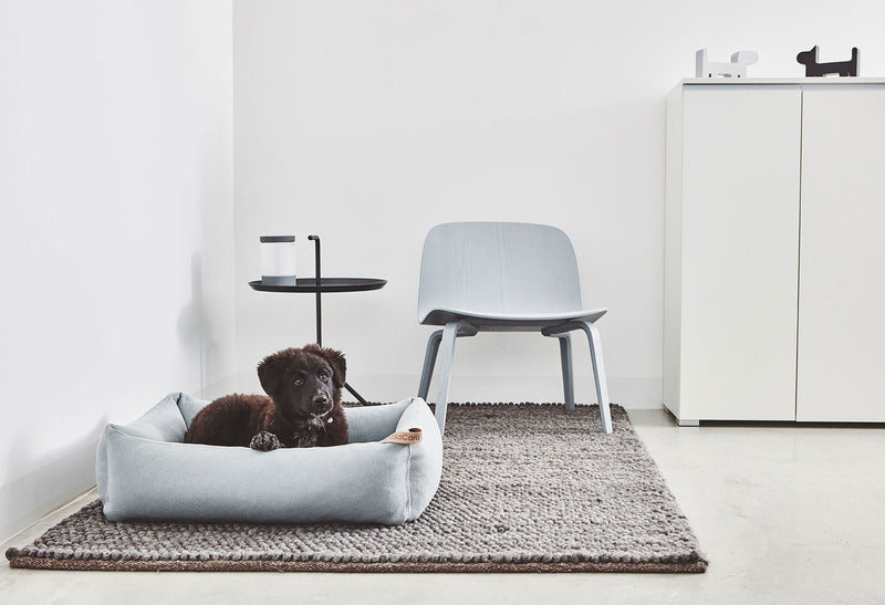 Sonno Box Bed