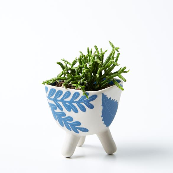 Botanica Footed Pocket Planter