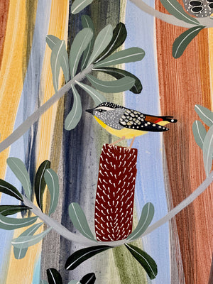 Pardalotes in the Banksia #3