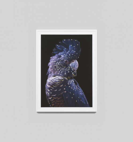 Black Cockatoo Print Glass Frame
