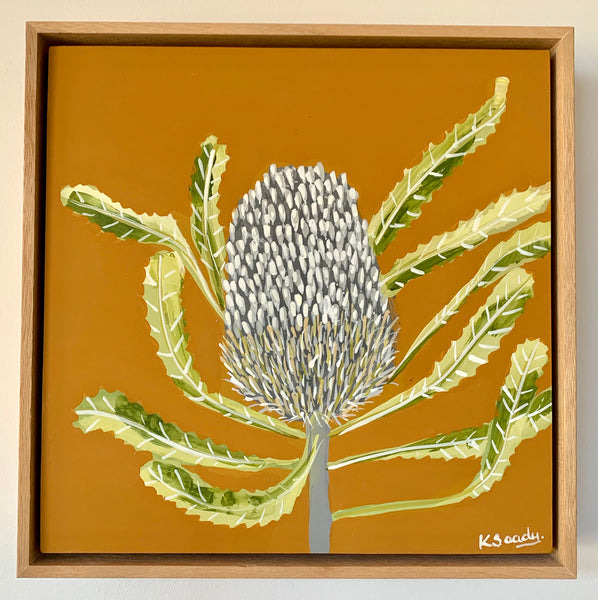 Banksia Mini #1