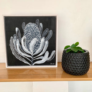 Banksia Mini #7