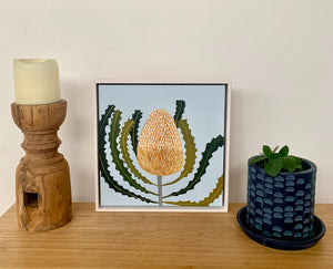 Banksia Mini #13