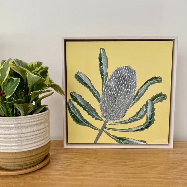Banksia Mini #14