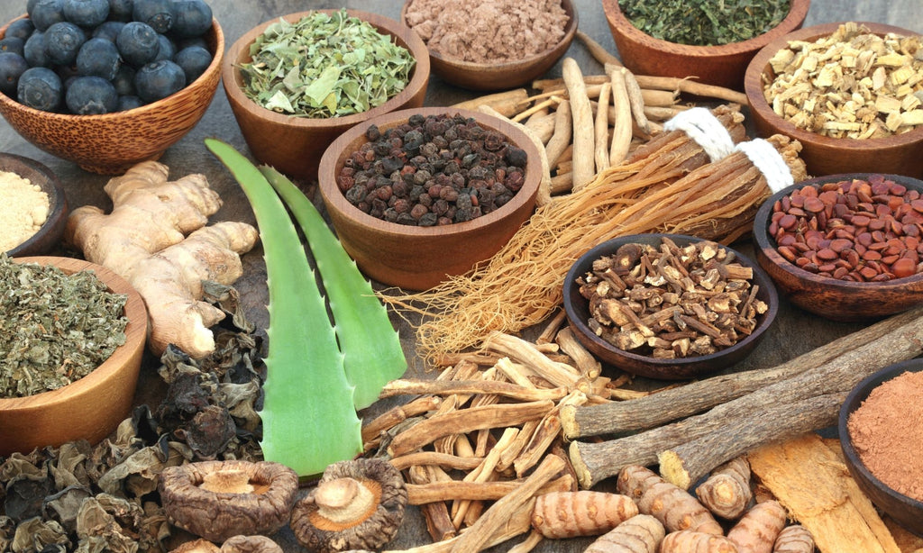 What are adaptogens?
