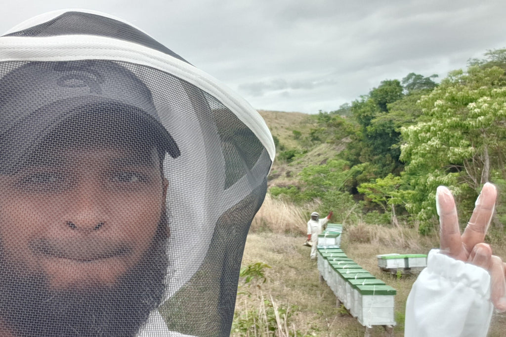 Siraz Rasheed - Haleemi Apiary - Introduction Blog