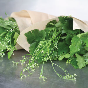 Japanese Parsley Flowers-Garnish-Gaiatree Sanctuary and Elevate-30g-Aggie Global Fiji
