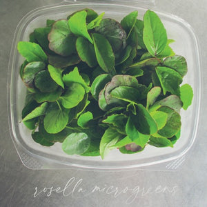 Rosella Microgreens-Garnish-Gaiatree Sanctuary and Elevate-Aggie Global Fiji