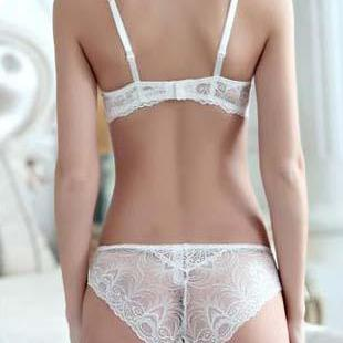 Daisy Transparent Lace Bra Set-Fascinating Nights