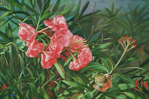 Oleander with a Tree Frog Canvas Giclee