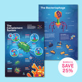 Biology Infographic Poster Bundle