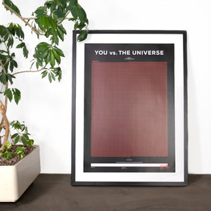 You vs. The Universe Poster