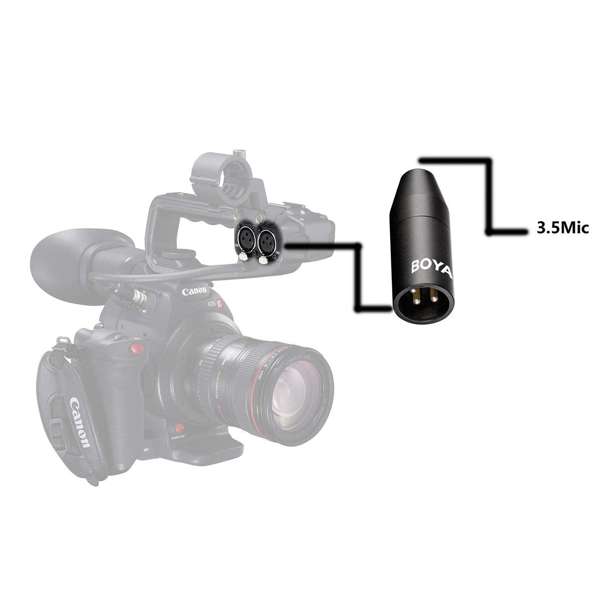 """BOYA 35C-XLR 3.5mm (TRS) Mini-Jack Female Microphone Adapter to 3-pin XLR Male Connector for Camcorders, Recorders, Mixers """