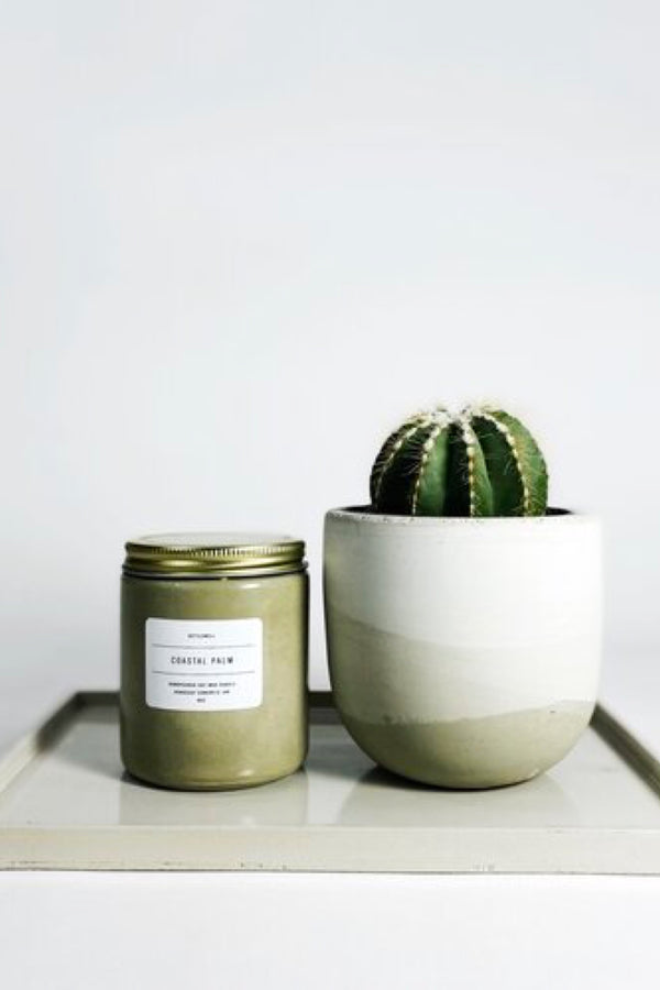 Coastal Palm Candle