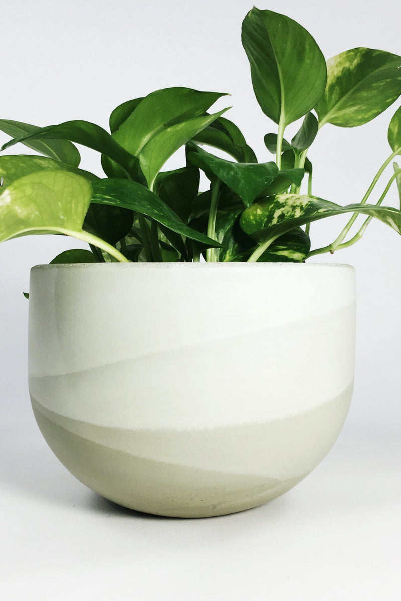 Large Sage Concrete Planter