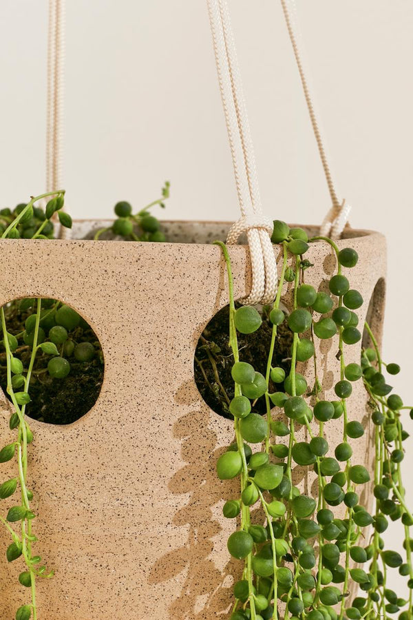 Speckled Cenote Hanging Planter