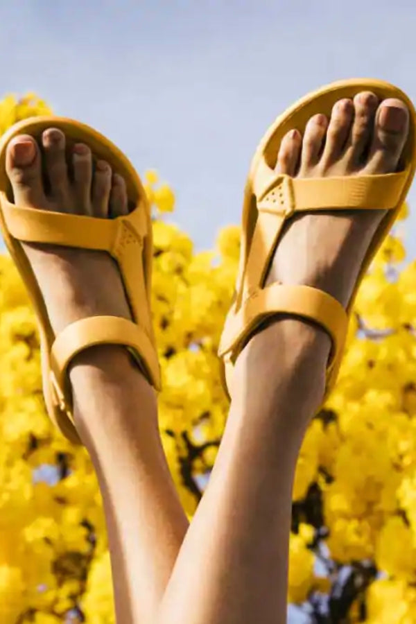 Sunflower Hurricane Drift Sandal