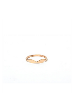 Gold Double Facet Ring