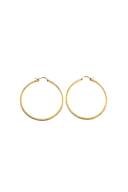 Gold Sol Hoops