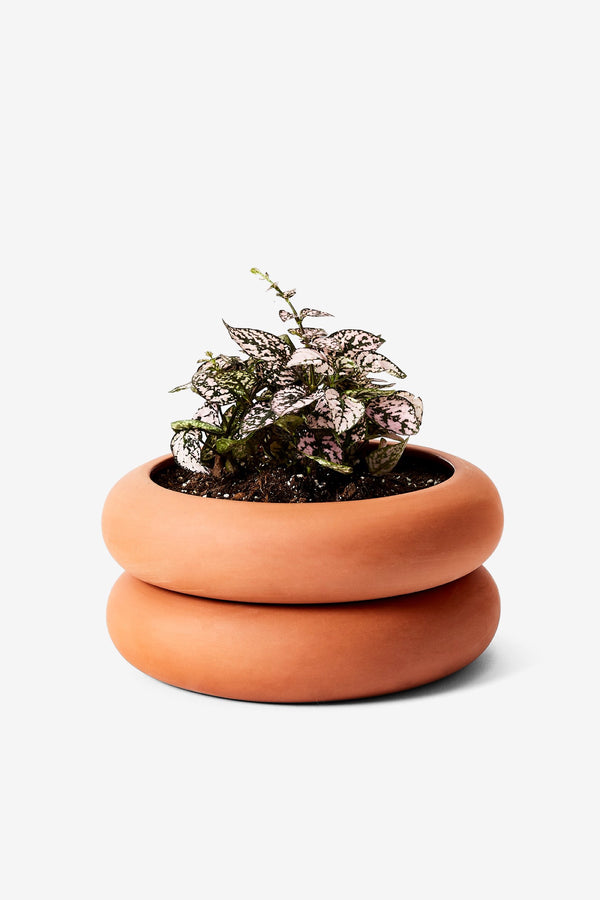 Terracotta Stacking Planter