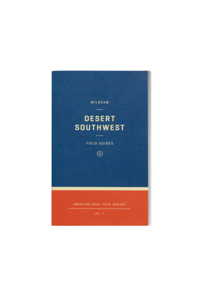 Desert Southwest Road Trip Guide