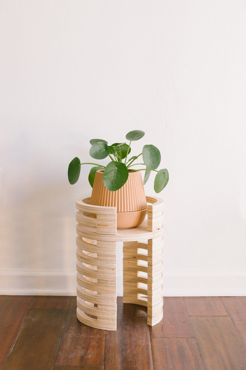 Mojave Plant Stand