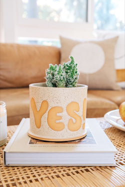 Small White Pot of Yes