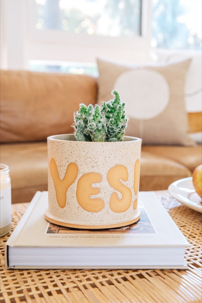 Small Pot of Yes