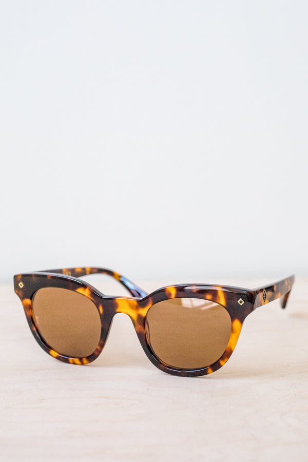 Brown Tortoise Perris Sunglasses