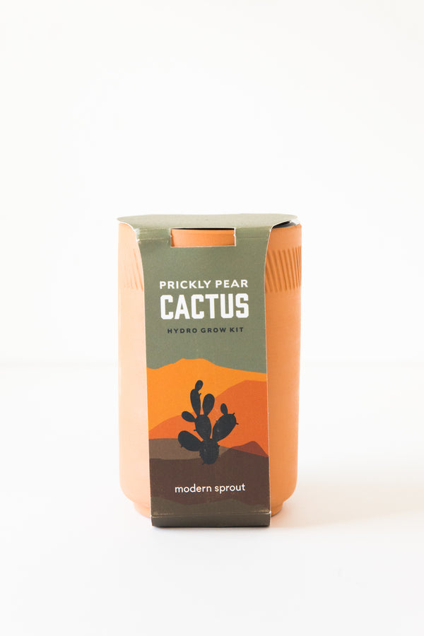 Cactus Terracotta Kit