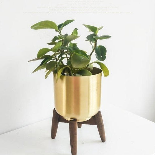 Gold Metal Planter with Wood Stand for Modern Boho Shabby Home Decor