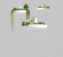 Load image into Gallery viewer, Planter Pendant Light in White Metal with LED Bulbs