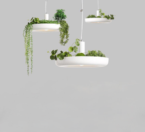 Planter Pendant Light in White Metal with LED Bulbs