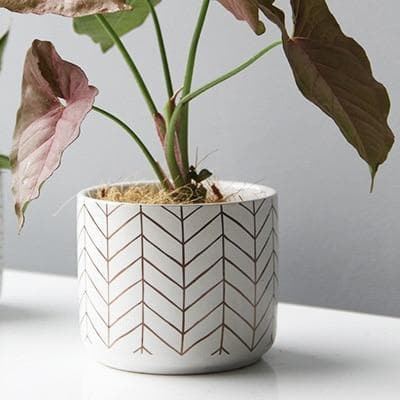 round abstract dotted white ceramic planter