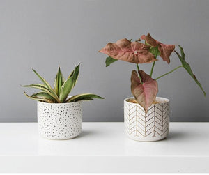 Abstract White Ceramic Planter