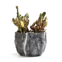 Load image into Gallery viewer, Modern Marbling Flower Pot Succulent pot Cactus Planter Pots Container Bonsai Planters with Hole 3.35Inch Perfect Gift Idea