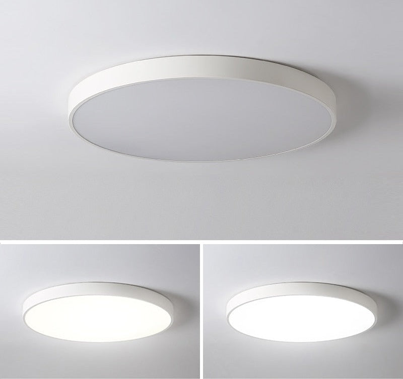 B&W Monochrome Ceiling LED Lamp