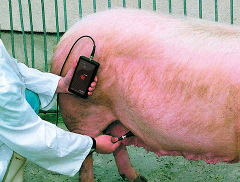 Pregnancy Detector for pigs - Boston Instruments and Equipment Co.