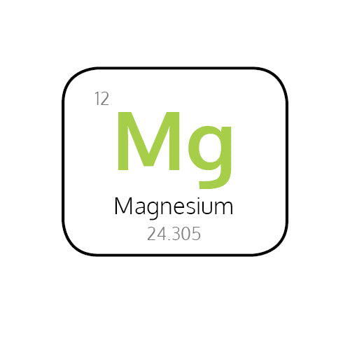 Why is Magnesium so Important in the Body?