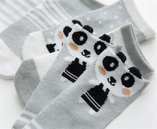 Load image into Gallery viewer, 5 Pair Baby Sock Pack B