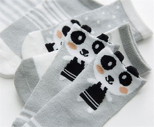 5 Pair Baby Sock Pack B