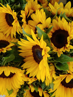 Order Sun Flowers - Order Flowers Online - Salinas Florist, Local Delivery - Magda's Flowers