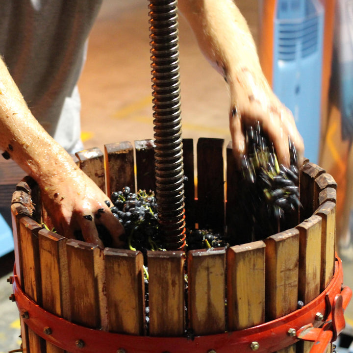 2020 Advanced Homemade Winemaking Course