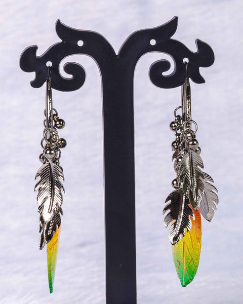 Colourful feather earings