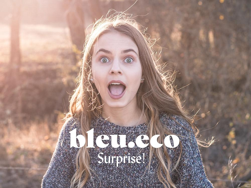 Surprise! en.bleu.eco . From $0.00 to $0.00. .